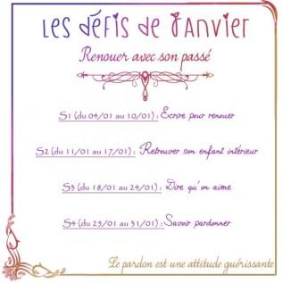 janvier-les-dc3a9fis